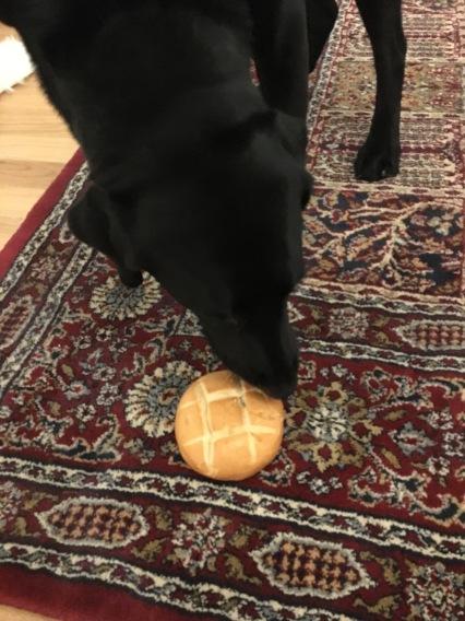 Heidi also loves brötchen