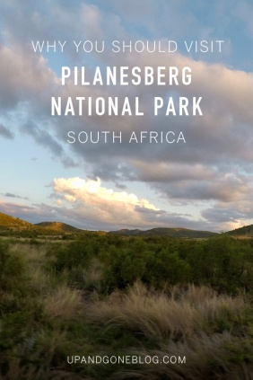 Pilanesberg3