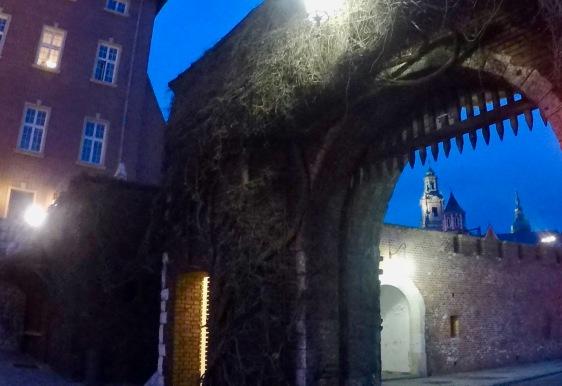 Explore Wawel Castle