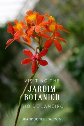 Jardim Botanico2